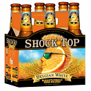 SHOCK TOP ALE 6NR