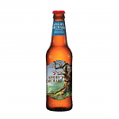 ANGRY ORCHARD APPLE 12NR